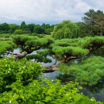 Relaxing in Nature: 6 Charming Botanical Gardens in the USA