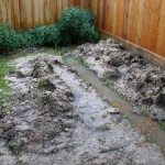 French Drains in Dallas are a low-cost solution