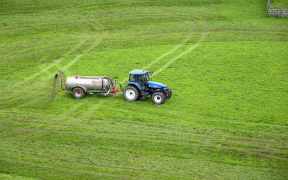 Types of Fertilizers, How can we use it and Common Issues